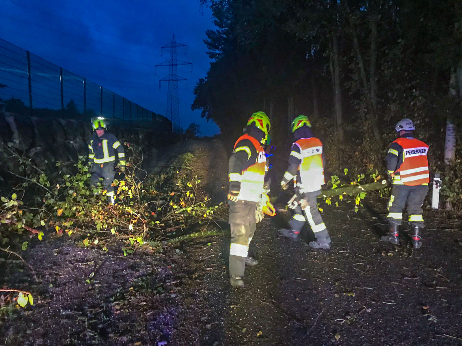 Sturmschaden: Baum über Straße